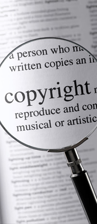 Assessorem els autors i a la indústria.